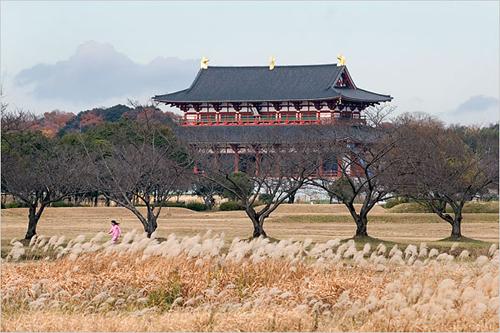 Thành phố thanh bình Nara