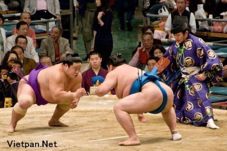 Những hình ảnh Sumo Nhật Bản