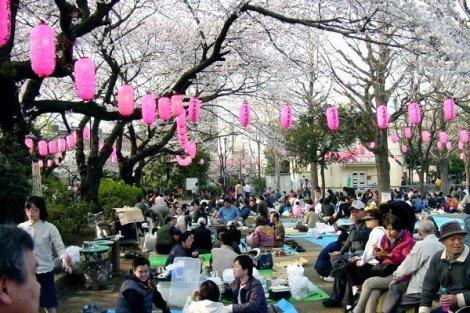 Tuổi thọ Của người Nhật