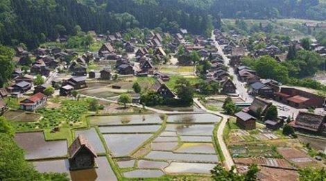 Làng Ogimachi - Ảnh: japan-guide.com