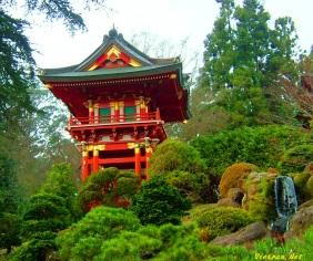 Ngắm cảnh đẹp Vườn Nhật Bản