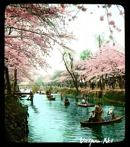 """Bộ sưu tập hình ảnh """"cực độc"""" về Nhật Bản xưa"""