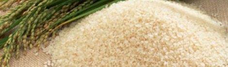Gạo ở Nhật Bản – Okome