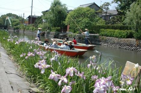 Mùa xuân ở thành phố nước Yanagawa2