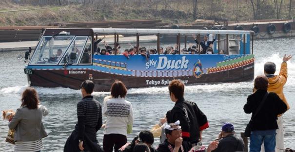 Xe bus đi đường thủy chính thức đi vào hoạt động