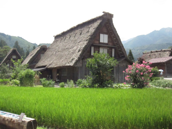 Thăm quan vùng yên bình của thôn quê